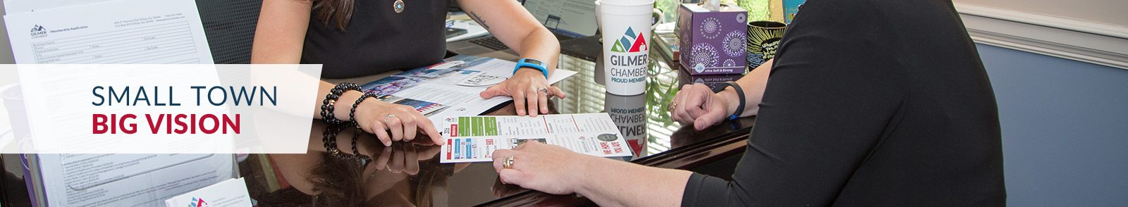 chamber-1-1600x294 February Business Connections - Gilmer County Chamber of Commerce