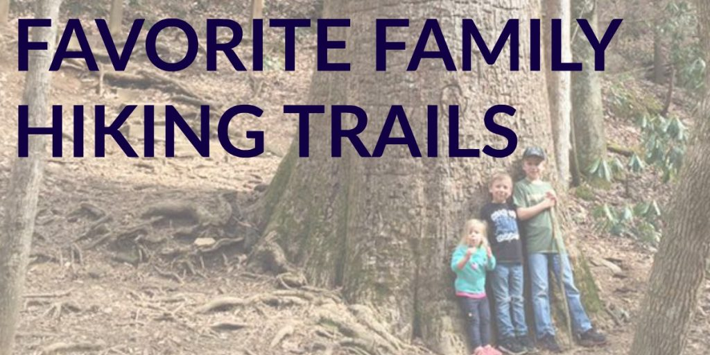 Family-Hiking-Trails-1024x512 Our Favorite Family Hiking Trails in Ellijay - Gilmer County Chamber of Commerce