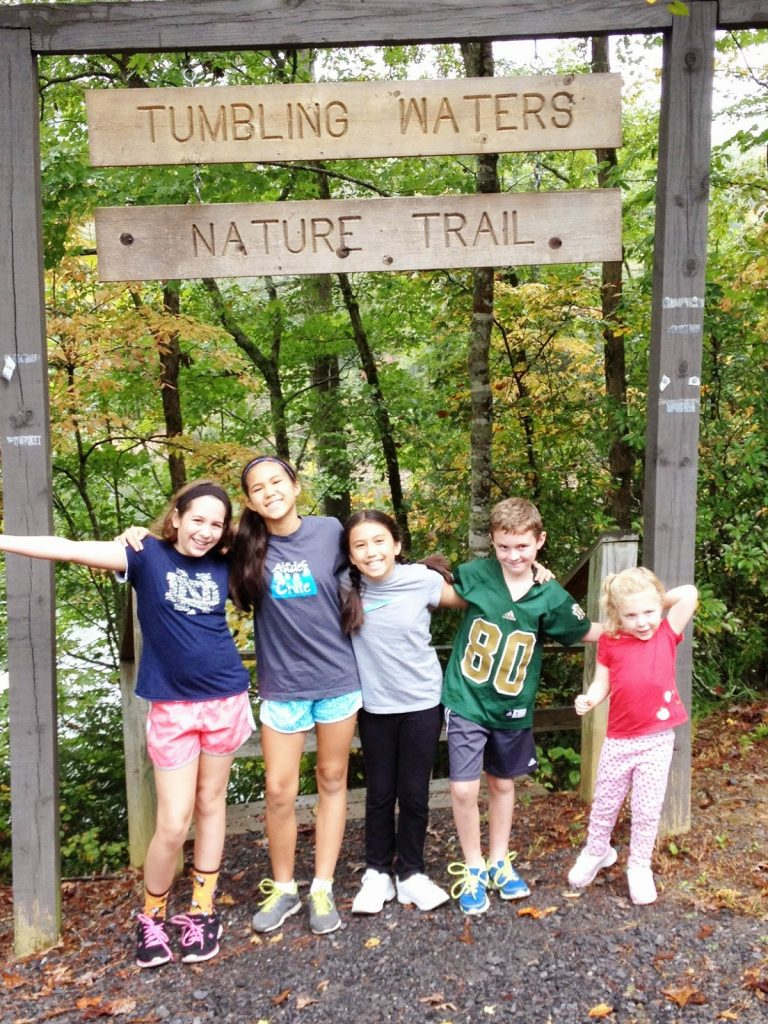 Tumbling-Waters-768x1024 Our Favorite Family Hiking Trails in Ellijay - Gilmer County Chamber of Commerce