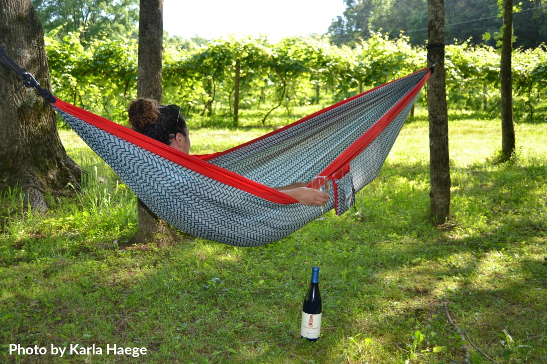 Small-Vineyards Amazing Places to Hang Your Hammock in Ellijay - Gilmer County Chamber of Commerce