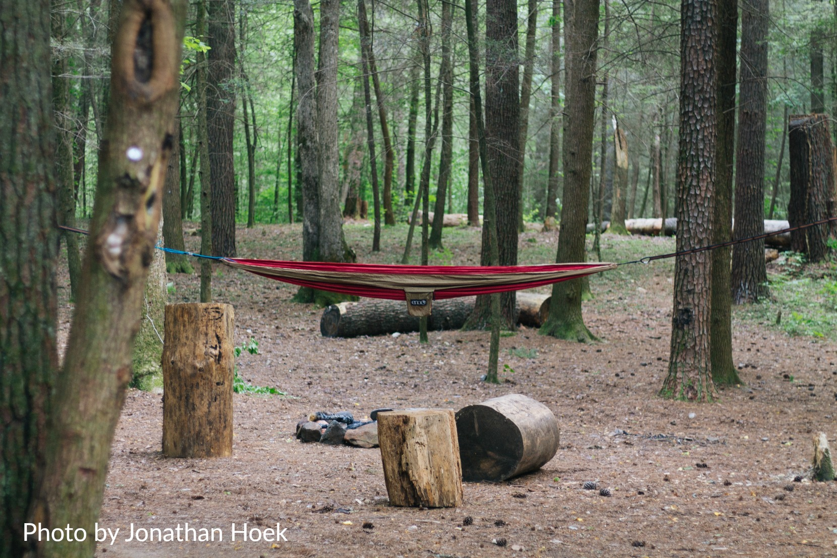 Small_Bear-Creek-3 Amazing Places to Hang Your Hammock in Ellijay - Gilmer County Chamber of Commerce