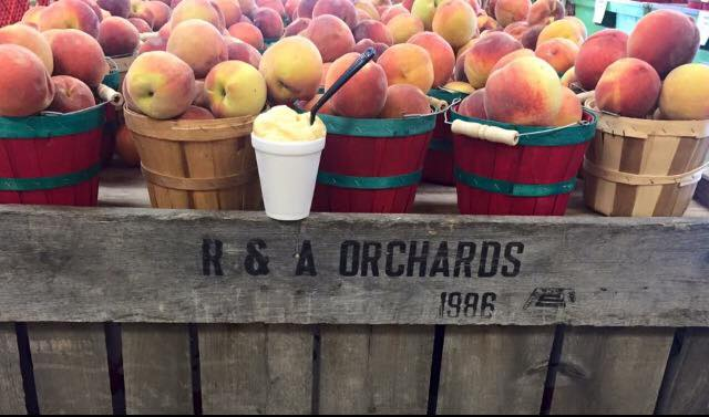Homemade peach ice cream at R & A Orchards