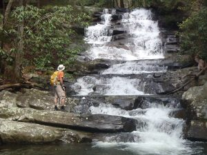 Go hiking through the beautiful Gilmer Mountains