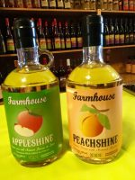 Moonshine Tastings at Mountain Treasures in Downtown Ellijay