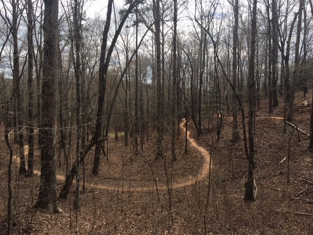 Carters-Lake-Trails Reasons to Ride Your Mountain Bike in Ellijay in 2018 - Gilmer County Chamber of Commerce