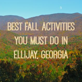 Greystoneview11 Best Fall Activities You Must Do in Ellijay - Gilmer County Chamber of Commerce