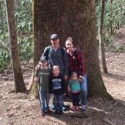 Our Favorite Family Hiking Trails in Ellijay