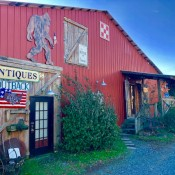 Top Places to Find a Hidden Antique Treasure in Ellijay